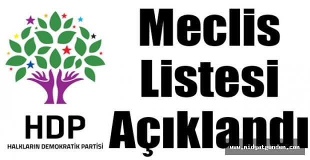 HDP Midyat Meclis Listesi Belli Oldu