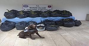 Mardin'de uyuşturucu madde ele geçirildi