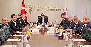 Mardin'in Sorunlarını Ankara'ya Taşıdılar