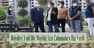 Belediye yeşil bir Mardin için çalışmalara hız verdi