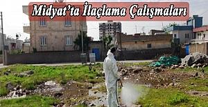 Midyat'ta ilaçlama çalışmaları başladı