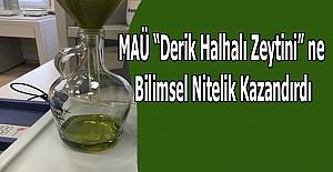 """bspan style=color:#0000ffMAÜ Derik Halhalı Zeytini"""" ne.../span/b"""