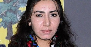 HDP'li eski ilçe başkanı gözaltına alındı
