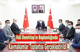 Vali Demirtaş'ın Başkanlığında Kaymakamlar Toplantısı Gerçekleştirildi