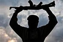 Nusaybin'de Bir Terörist Teslim Oldu