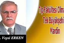 Tıp Fakültesi Olmayan Tek Büyükşehir: Mardin