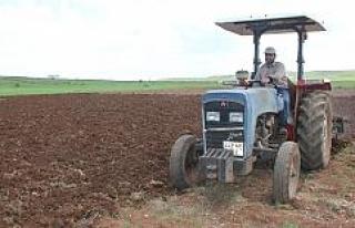 Midyatlı çiftçiler, Kovid-19'a rağmen ekimi...