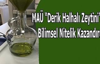 """MAÜ """"Derik Halhalı Zeytini"""" ne Bilimsel Nitelik..."""