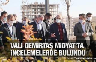 Vali Demirtaş, Lavanta Fidelerini Toprakla Buluşturup...