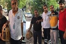 Yaralı Güvercine 112 Sağlık Ekibi Sahip Çıktı