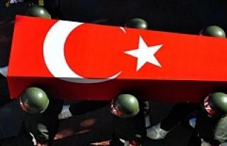 Nusaybin'de 1 uzman çavuş şehit oldu