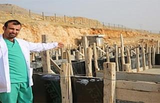 Mardin'de Hayvan Hastanesi Açılacak