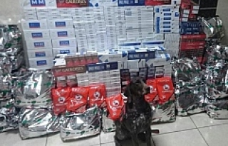 TIR Garajında 98 Bin 200 Paket Kaçak Sigara Ele...