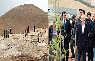 Türkmen Geçidi Ağaçlandırma Projesi Başladı