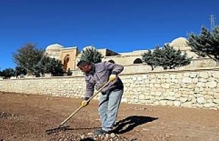 Mardin'de tarihi mekânlar yenileniyor