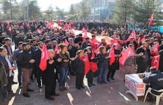 Midyat'ta Zeytin Dalı Harekâtı'na Destek...