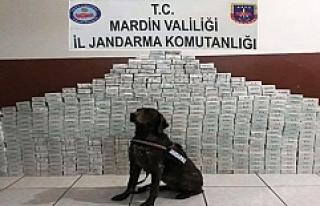 Ömerli'de 8 bin 300 Paket Sigara Ele Geçirildi