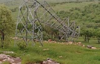 Fırtına Midyat'ta elektrik direklerini devirdi,...