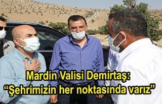 """Mardin Valisi Demirtaş: """"Şehrimizin her noktasında..."""