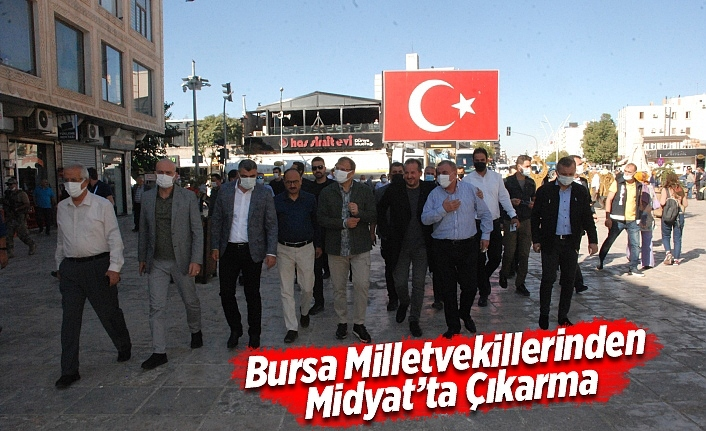 Bursa Milletvekillerinden Midyat'ta Çıkarma