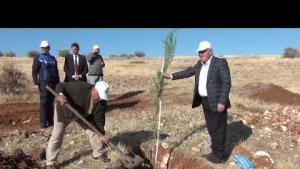 Midyat ilçesinde 35 bin 188 fidan toprakla buluşturuldu